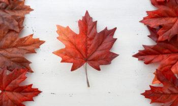 Le Canada élu pays du monde qui offre la meilleure qualité de vie